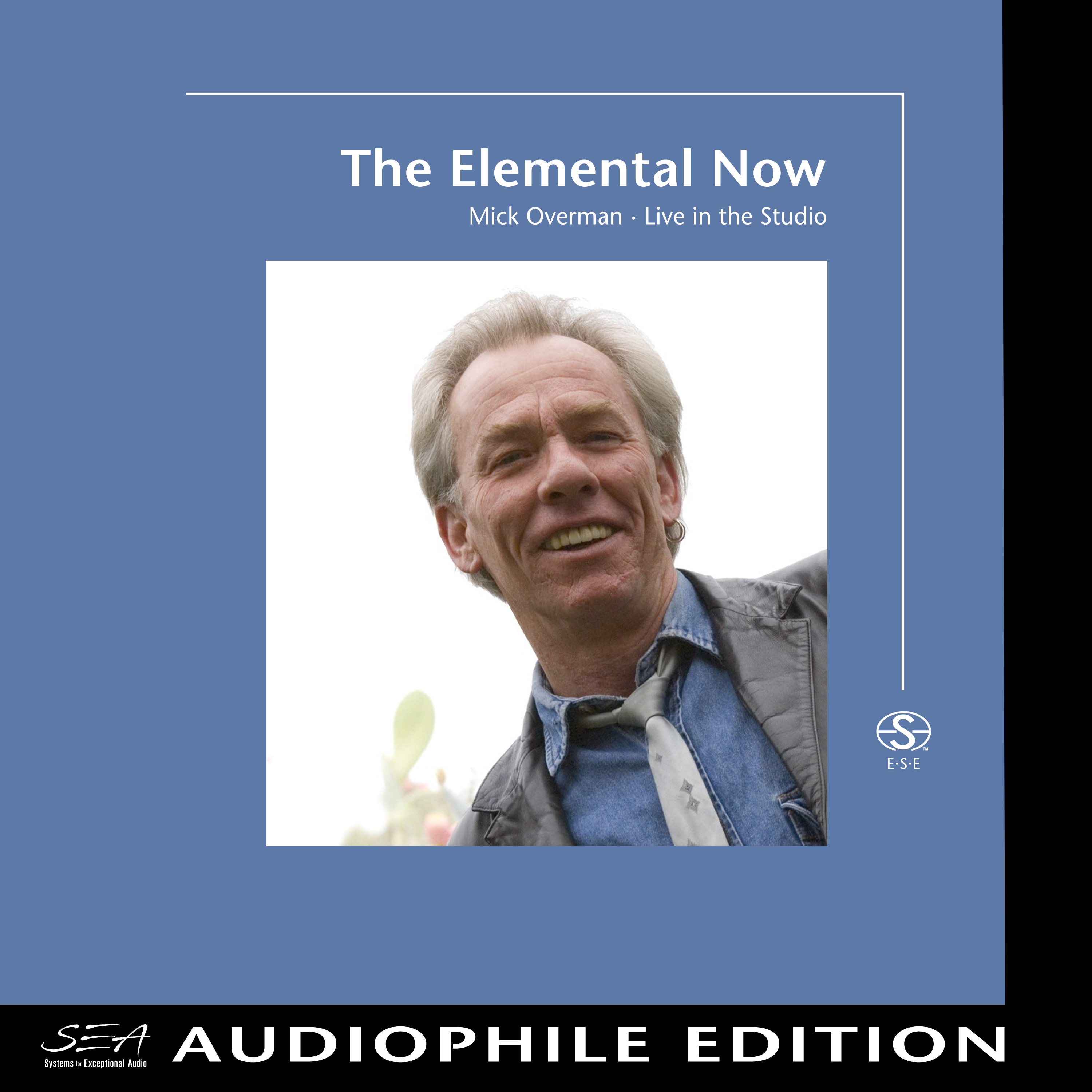 Mick Overman - The Elemental Now - Cover Image