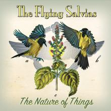The Flying Salvias - The Nature of Things - Cover Image